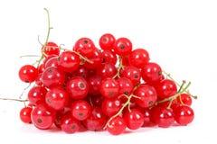 Häufen Sie Beeren der roten Johannisbeere auf weißem Hintergrund an Stockfotografie