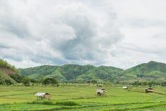 Häuschen der Landschaft Lizenzfreies Stockbild