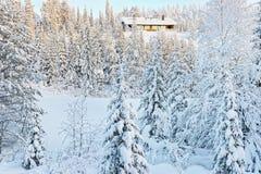 Häuschen in einem Hügel über dem Schnee bedeckte Wald in Ruka in Finla Stockbild
