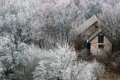 Häuschen in einem schönen Schneewald Stockfotos