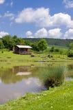 Häuschen in einem Teich lizenzfreies stockbild