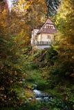 Häuschen im Wald nahe einem Nebenfluss Stockfotografie
