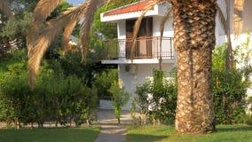 Häuschen mit Palme im Garten, Sommerszene stock video