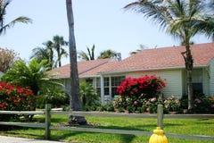 Häuschen mit rotem Bougainvillae Stockfoto