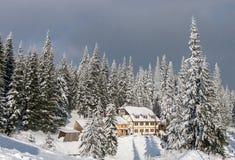 Häuschen unter den schneebedeckten Kiefern Stockbilder