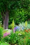 Häuschengarten und Birnenbaum Stockfoto
