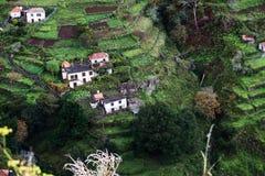 Häuser auf bebauten terassenförmig angelegten Feldern auf dem Hügel auf der Insel von Madeira. Lizenzfreies Stockfoto