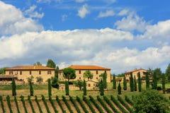 Häuser mit Weinberg- und Zypressenbäumen in ` Orcia, Toskana Val d, stockbilder