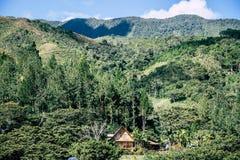 Häuser in Oxapampa Lizenzfreie Stockfotografie
