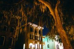 Häuser und überhängende Eichen auf Drayton-Straße nachts in S Lizenzfreie Stockfotografie