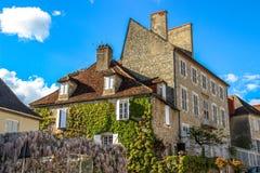 Häuser und Efeu von Martel, Los, Midi-Pyrénées, Frankreich Stockfoto