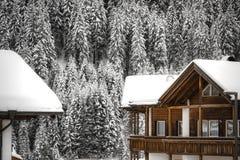 Häuser und Kiefernwald unter dem großen Schnee stockbild
