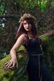 Häxa i mörk skog Royaltyfri Bild