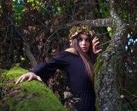 Häxa i mörk skog Royaltyfri Fotografi