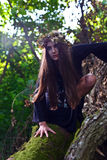 Häxa i mörk skog Royaltyfria Bilder