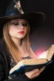 Häxa med spellbook arkivbild