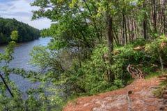 Häxabergsklyftan är en gömd dragning i Wisconsin Dells och kan royaltyfria foton