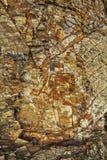 Häxan på en kvastuppsättning i sten Arkivfoton