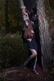 Häxor i mörk skog Royaltyfria Bilder