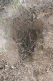 Hål på jordning Royaltyfria Foton
