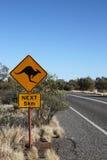 Håll ögonen på för kängurur, Australien Royaltyfria Foton