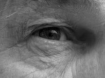 hålla ögonen på dig Fotografering för Bildbyråer