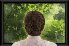 hålla ögonen på för television arkivfoton