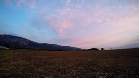 Hålla ögonen på molnen och himlen att vända rosa färger stock video