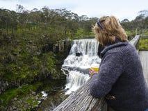 Hålla ögonen på vattenfallet Arkivbild