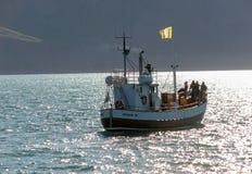 Hållande ögonen på fartyg för val med passagerare som ut går Husaviken för waching av puckelryggvalet iceland royaltyfria foton
