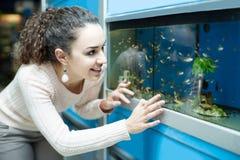 Hållande ögonen på fisk för kvinnlig kund i akvariumbehållare Arkivbilder