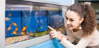 Hållande ögonen på fisk för kvinnlig kund i akvariumbehållare Royaltyfri Bild
