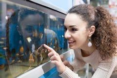 Hållande ögonen på fisk för kvinnlig kund i akvariumbehållare Arkivfoton