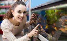 Hållande ögonen på fisk för kvinnlig kund i akvariumbehållare Royaltyfria Bilder