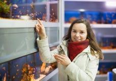 Hållande ögonen på fisk för positiv kvinna i akvariumbehållare Royaltyfri Bild