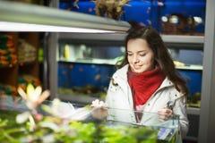 Hållande ögonen på fisk för positiv kvinnlig kund i akvariumbehållare Royaltyfri Foto