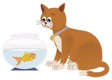 Hållande ögonen på guldfisk för katt i bunke Royaltyfria Bilder