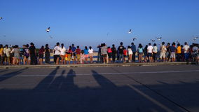 Hållande ögonen på seagull för folk på den Bangpu rekreationmitten Arkivfoton