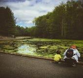 Hållande ögonen på sjö för moder och för son Royaltyfria Bilder