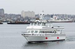 Hållande ögonen på skyttelsvansar för val av havet som lämnar Fairhaven Arkivfoton
