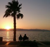 Hållande ögonen på solnedgång på havet arkivfoton