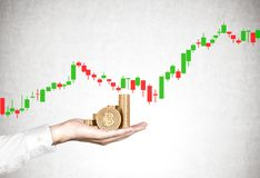 Hållande bitcoins för hand, graf, betongvägg arkivfoton