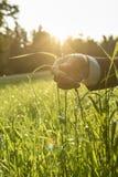 Hållande blad för man av nytt grönt gräs Royaltyfria Bilder