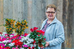 Hållande blomningväxt för hög kvinna Royaltyfri Bild