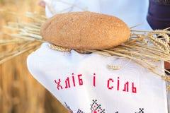 Hållande brödkorn för kvinna Arkivbilder