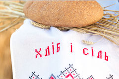 Hållande brödkorn för kvinna Royaltyfria Foton