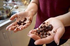 Hållande chokladchiper Arkivbilder