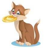 Hållande euromynt för katt Royaltyfri Fotografi