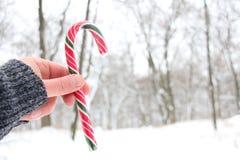 Hållande godisrotting för hand Snöig jullandskap Royaltyfria Foton