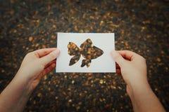 Hållande guld- fisk arkivbilder